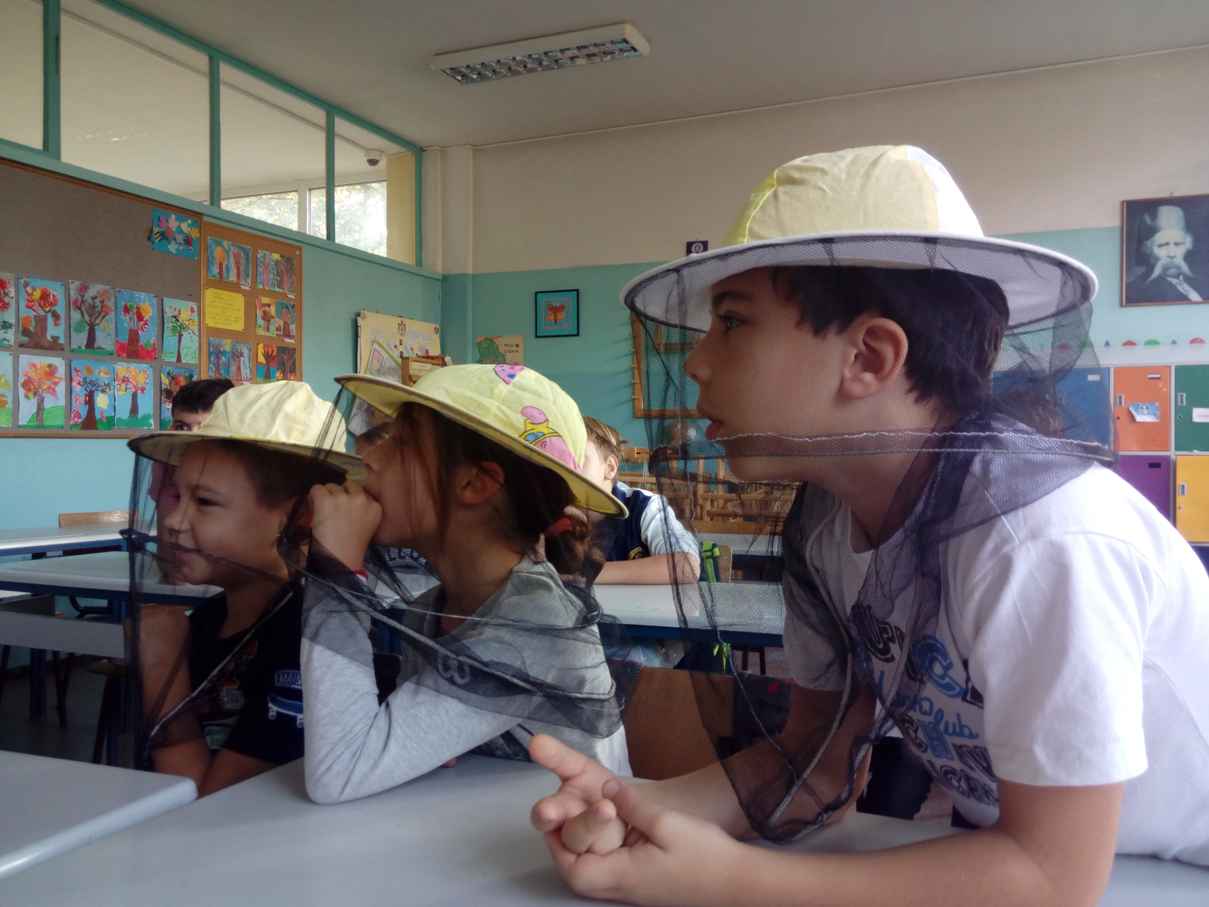 Pcelar i pcele u nasoj skoli (2)
